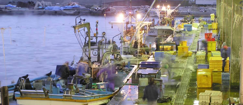 スライド画像10 漁港
